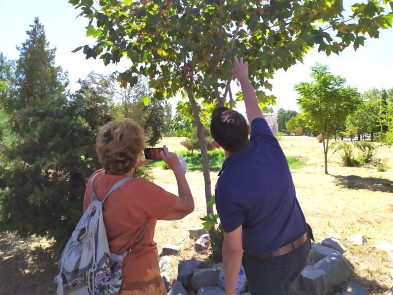 Общественный совет при Госкомэкологии инициировал проведения лесопотологического обследования зелёных зон г.Ташкент