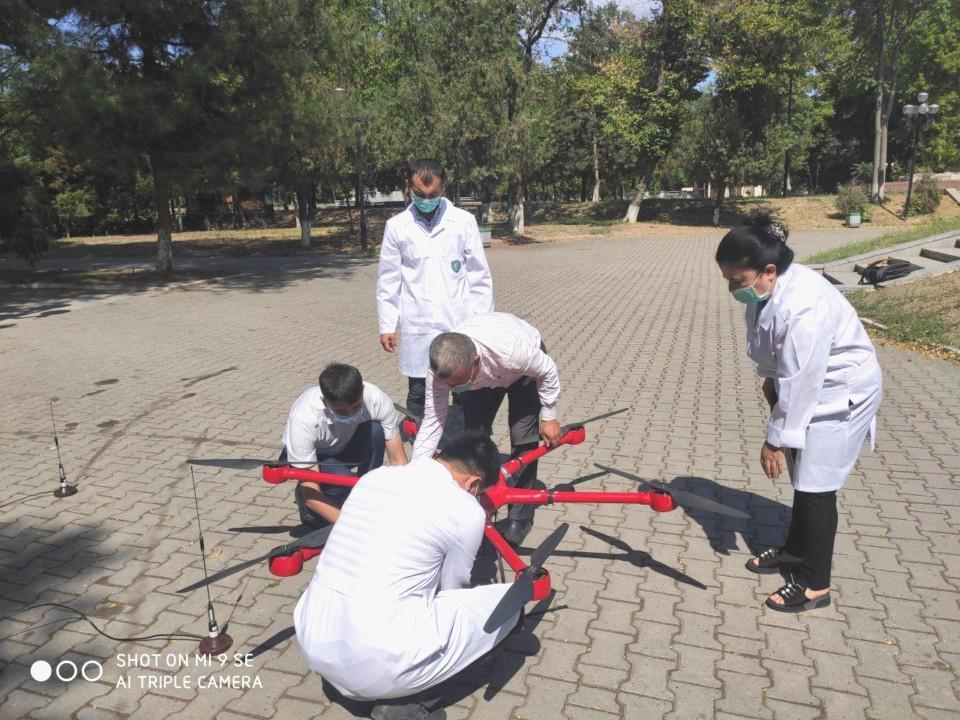 Защита деревьв от насекомых-вредителей в парке «Дустлик». Продолжение общественных инициатив